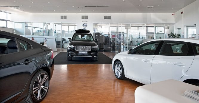 different-Vehicle-Dealer-667x346